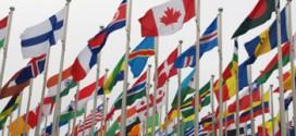 Виды флагов и области их применения
